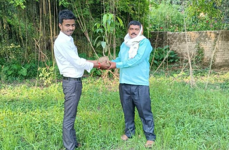 Tree planting took place on World Environment Day