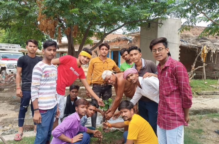 Tree plantation campaign launched